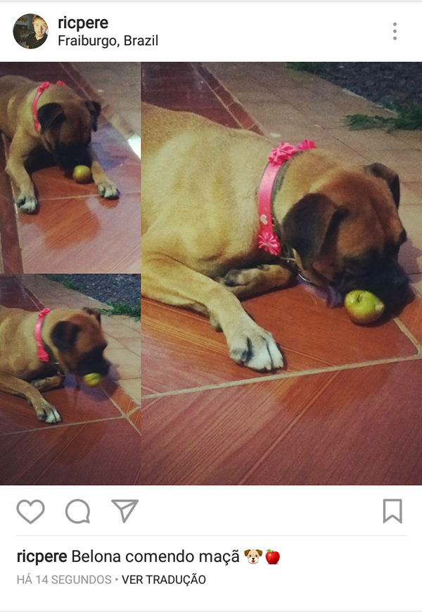 https://www.instagram.com/p/BOPIHGKgKMS/?taken-by=ricpere