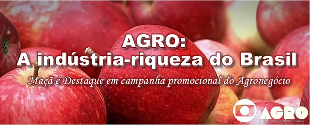 http://www.abpm.org.br/producao-de-macas-tem-aumento-de-11-no/