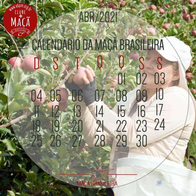 01042021_calendario