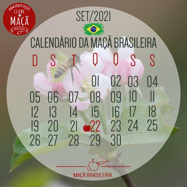 01092021_calendario